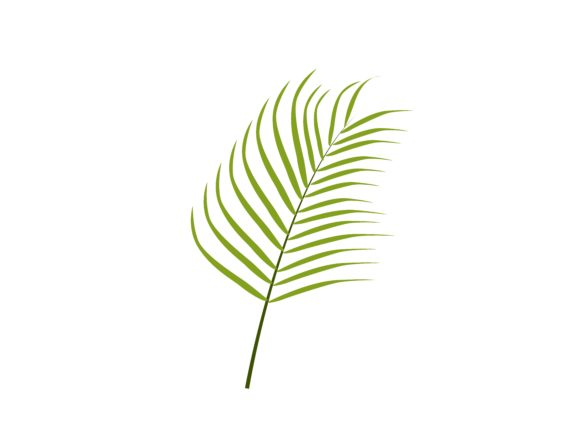 Download Free Papaya Leaf Botanical Graphic By Purplebubble Creative Fabrica for Cricut Explore, Silhouette and other cutting machines.