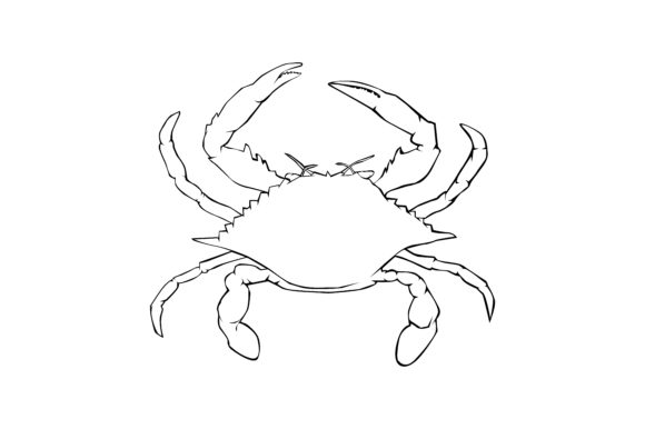 Download Free Crab Vector Lineart Graphic By Rfg Creative Fabrica for Cricut Explore, Silhouette and other cutting machines.