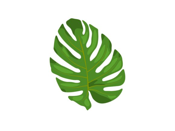 Print on Demand: Monstera Leaf Vector Illustration Graphic Illustrations By purplebubble