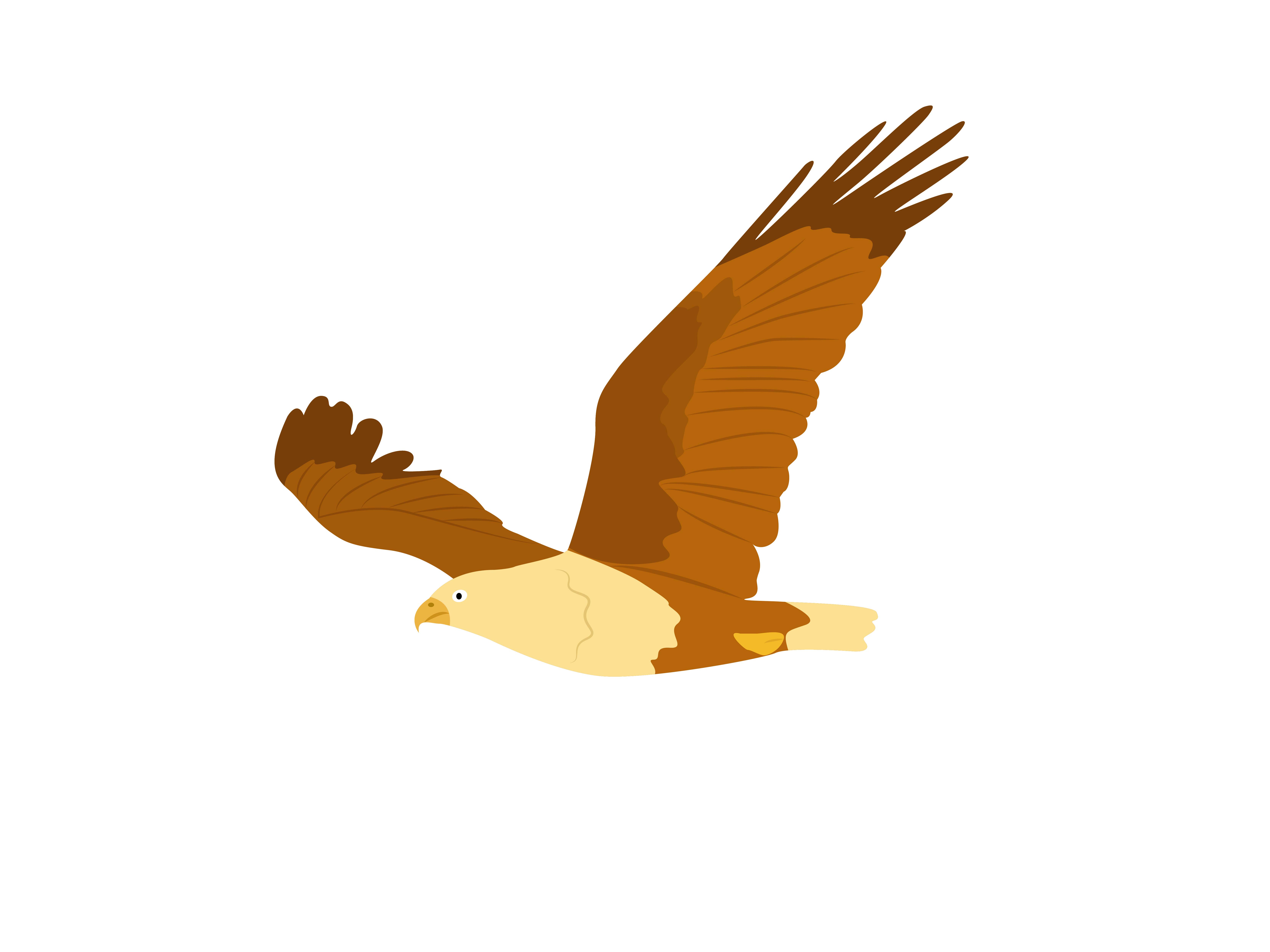 Download Free Eagle Bird Animal Graphic By Archshape Creative Fabrica for Cricut Explore, Silhouette and other cutting machines.