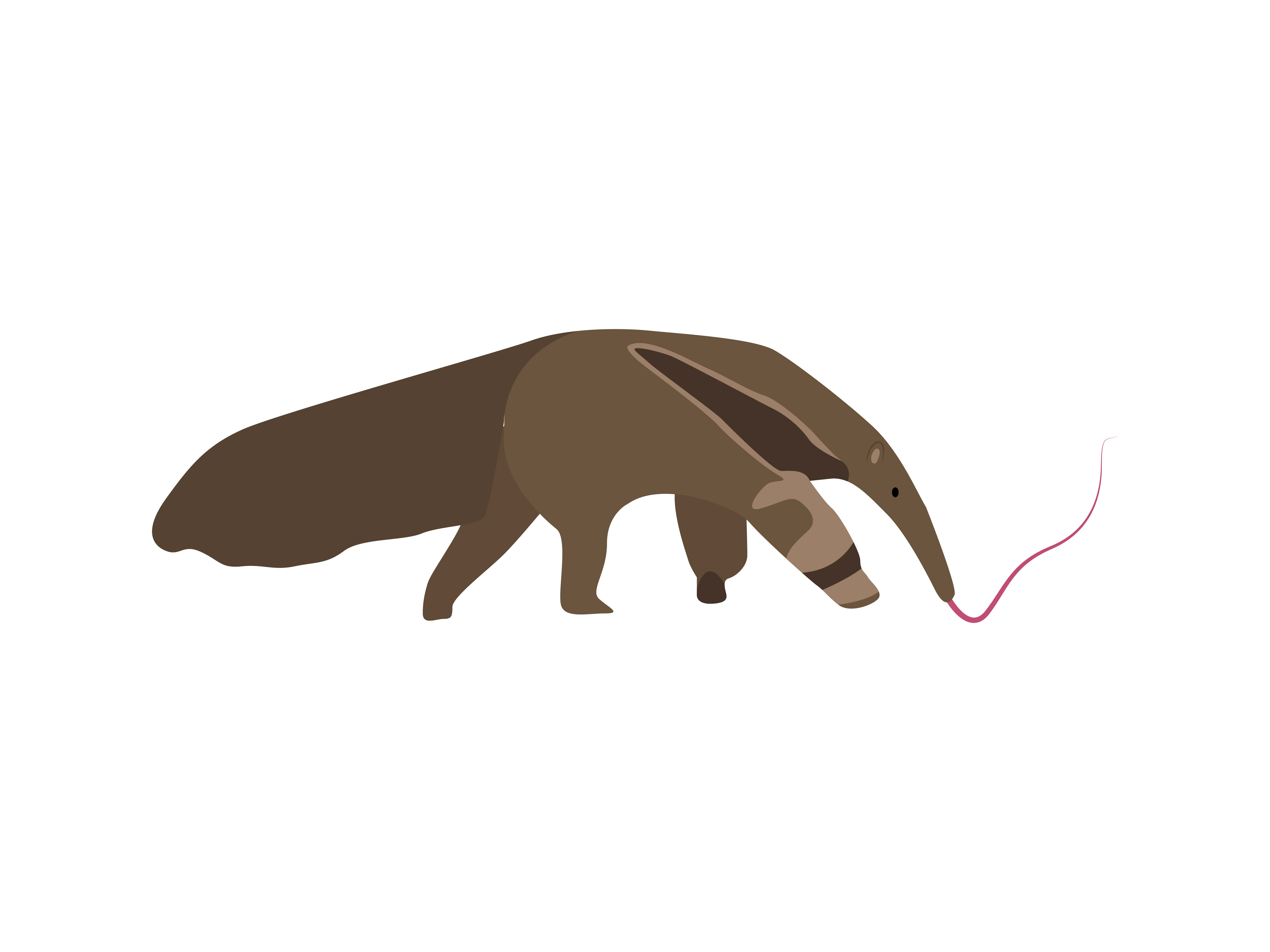 Download Free Giant Anteater Animal Graphic By Archshape Creative Fabrica for Cricut Explore, Silhouette and other cutting machines.
