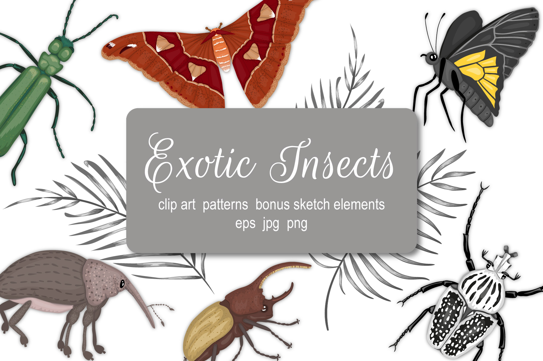 Download Free Exotic Insects Graphic By Lexiclaus Creative Fabrica for Cricut Explore, Silhouette and other cutting machines.