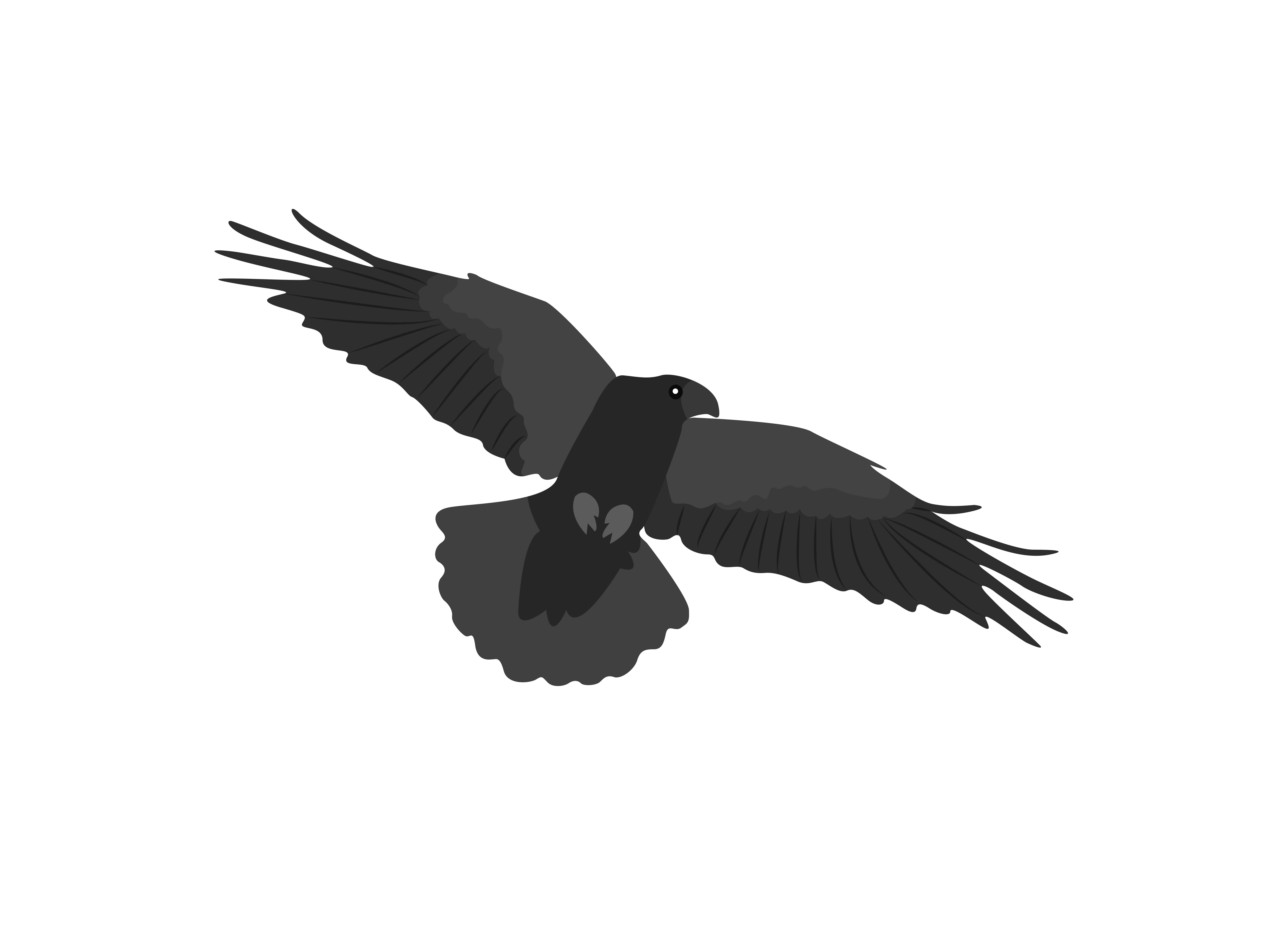 Download Free Flying Crows Expand Their Wings Animal Graphic By Archshape for Cricut Explore, Silhouette and other cutting machines.