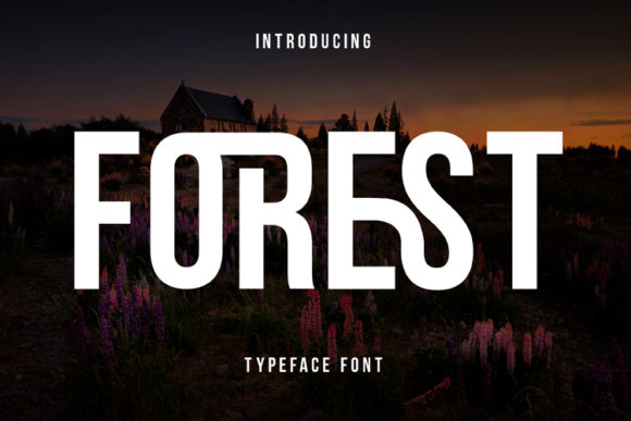 Print on Demand: Forest Display Font By ed.creative