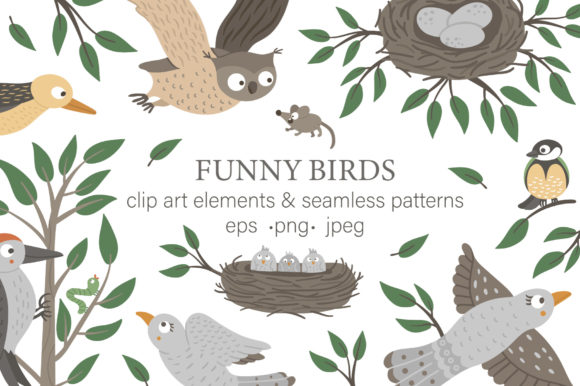 Funny Birds Graphic Illustrations By lexiclaus