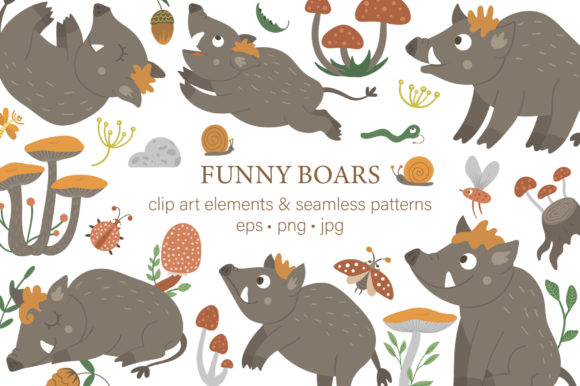 Funny Boars Graphic Illustrations By lexiclaus
