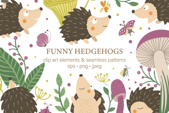 Funny Hedgehogs Graphic Illustrations By lexiclaus