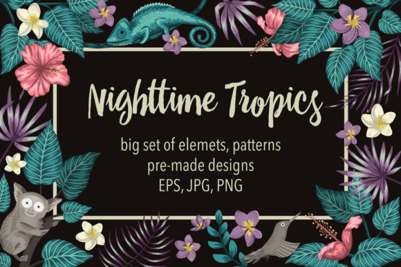 Nighttime Tropics Graphic Illustrations By lexiclaus