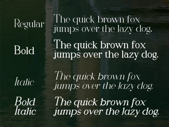 Download Free Romany Serif Font By Nryntdw Creative Fabrica for Cricut Explore, Silhouette and other cutting machines.