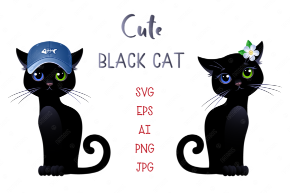 Set of 6 Illustrations of Black Cat. Graphic Illustrations By Natariis Studio