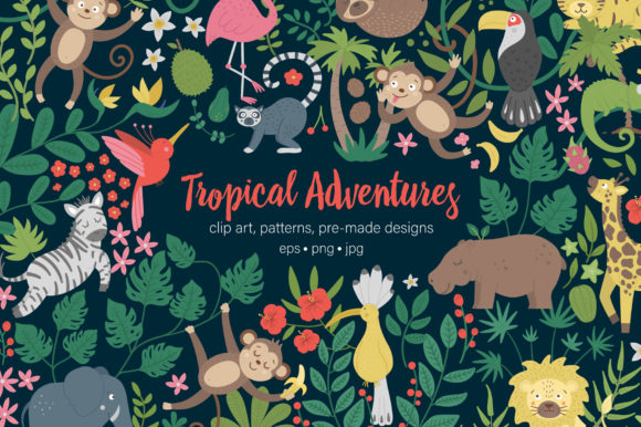 Tropical Adventures Graphic Illustrations By lexiclaus
