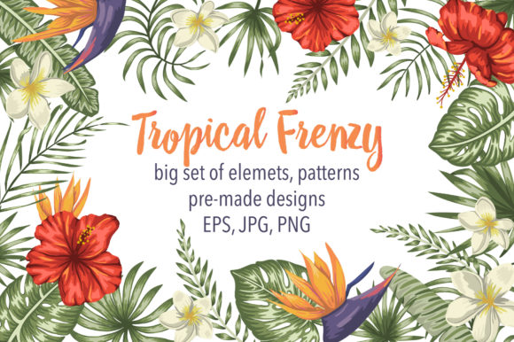 Tropical Frenzy Graphic Illustrations By lexiclaus