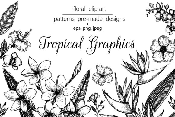 Download Free Tropical Graphics Graphic By Lexiclaus Creative Fabrica for Cricut Explore, Silhouette and other cutting machines.