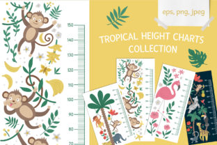 Tropical Height Charts Collection Graphic Illustrations By lexiclaus