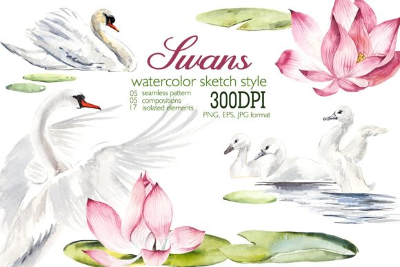 Watercolor White Swans with Pink Lilies Grafik Illustrationen von Мария Кутузова