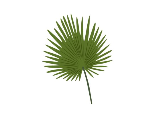 Download Free Artificial Fan Palm Leaf Graphic By Purplebubble Creative Fabrica for Cricut Explore, Silhouette and other cutting machines.