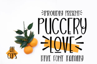 Print on Demand: Puccery Love Script & Handwritten Font By jehansyah251