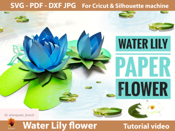 Download Free 1 Paper Water Lily Svg Designs Graphics for Cricut Explore, Silhouette and other cutting machines.
