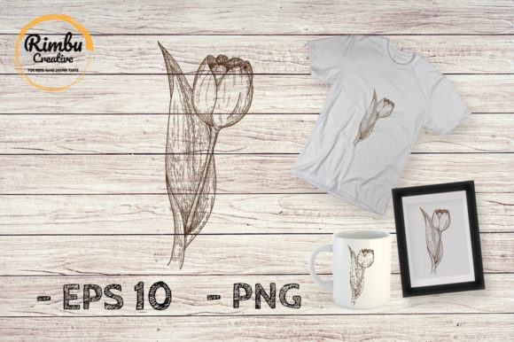 Download Free Engraving Drawing Tulip Flower Graphic By Rimbu Creative for Cricut Explore, Silhouette and other cutting machines.