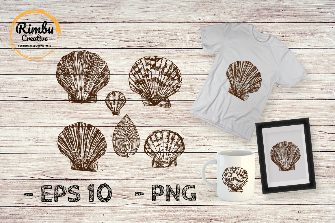 Download Free Seashell Bundle Drawing Illustration Graphic By Rimbu Creative for Cricut Explore, Silhouette and other cutting machines.