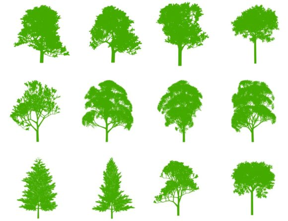 Download Free Set Of 20 Tree Silhouettes Graphic By Americodealmeida Creative Fabrica for Cricut Explore, Silhouette and other cutting machines.