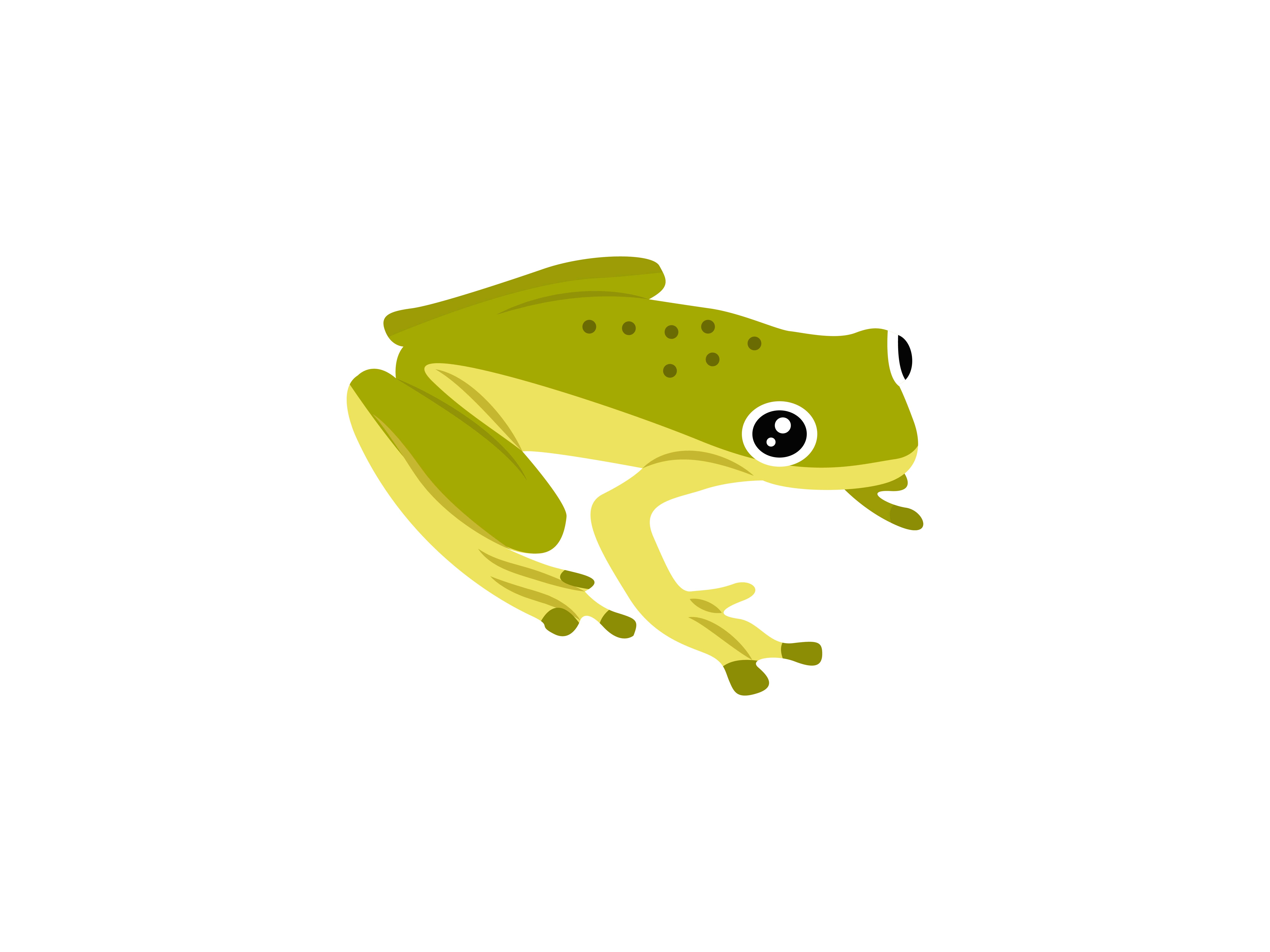 Download Free Hylidae Frog Animal Graphic By Archshape Creative Fabrica for Cricut Explore, Silhouette and other cutting machines.