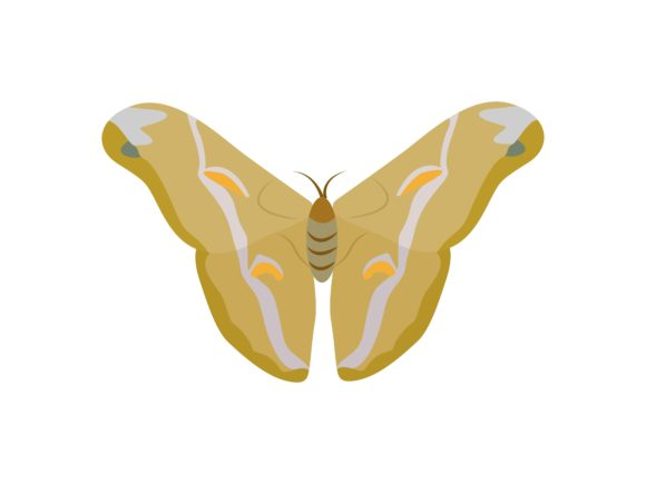Download Free Morpho Butterfly Animal Graphic By Archshape Creative Fabrica SVG Cut Files
