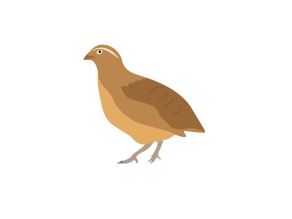 Download Free Quail Bird Animal Graphic By Archshape Creative Fabrica for Cricut Explore, Silhouette and other cutting machines.