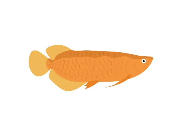 Download Free Arowana Fish Animal Graphic By Archshape Creative Fabrica for Cricut Explore, Silhouette and other cutting machines.