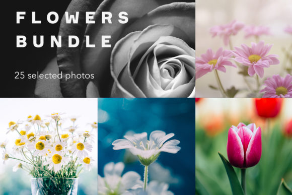 Print on Demand: Flowers Bundle, 25 Photos Graphic Nature By frostroomhead
