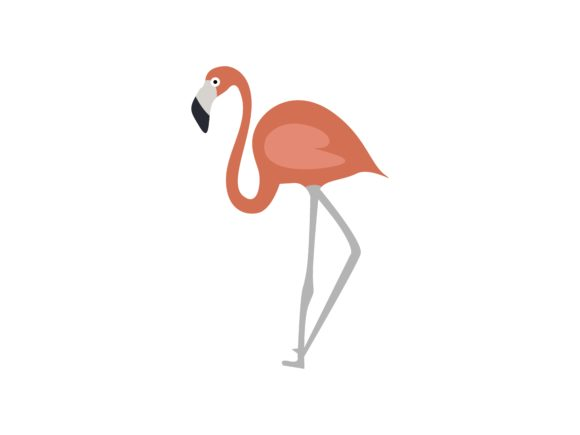 Print on Demand: Red Flamingo Animal Graphic Illustrations By archshape