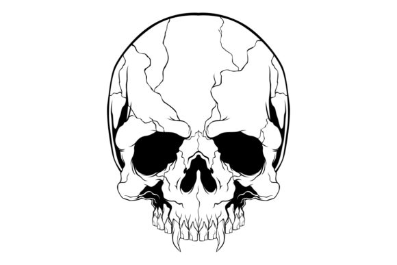 Skull Vector Hand Drawing Graphic By Epic Graphic Creative Fabrica