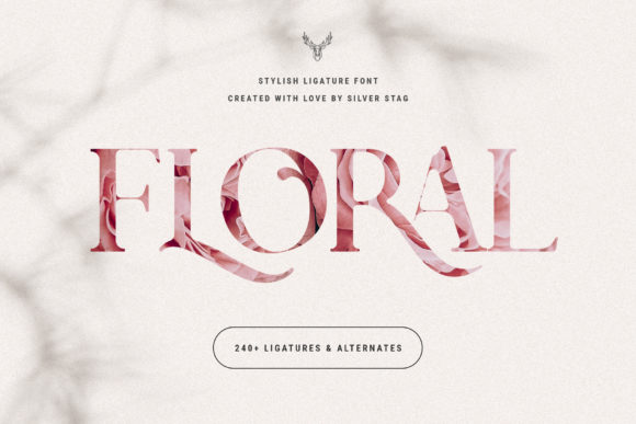 Print on Demand: Charles Serif Font By SilverStag - Image 12