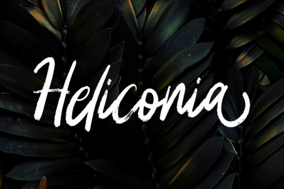 Print on Demand: Heliconia Script & Handwritten Font By Stripes Studio
