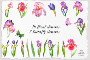 Print on Demand: Irises Watercolor Clipart Flower Graphic Illustrations By ElenaZlataArt 2