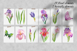 Print on Demand: Irises Watercolor Clipart Flower Graphic Illustrations By ElenaZlataArt 7