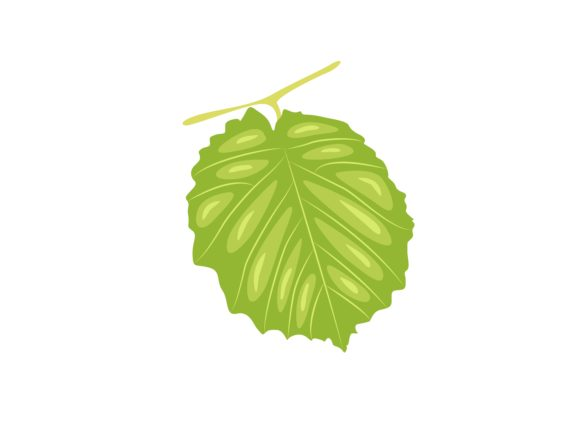 Download Free Kiwi Leaf Graphic By Purplebubble Creative Fabrica for Cricut Explore, Silhouette and other cutting machines.