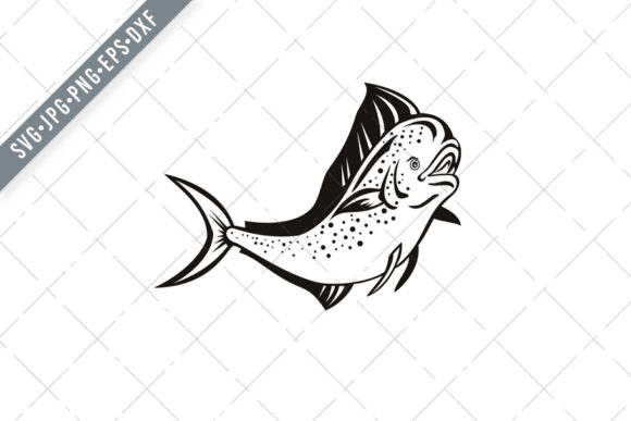 Download Free Mahi Mahi Or Common Dolphinfish Graphic By Patrimonio Creative for Cricut Explore, Silhouette and other cutting machines.