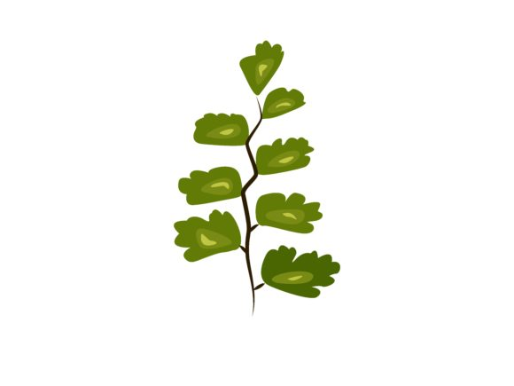 Download Free Maidenhair Leaf Graphic By Purplebubble Creative Fabrica for Cricut Explore, Silhouette and other cutting machines.