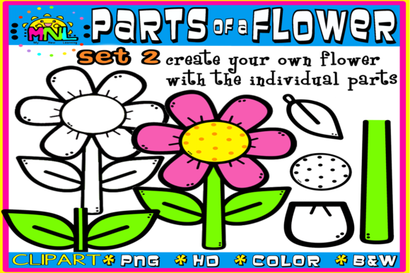 Download Free Parts Of A Flower Set 2 26 Images Graphic By Ziza Mariposa for Cricut Explore, Silhouette and other cutting machines.