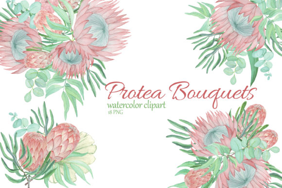 Print on Demand: Protea and Eucalyptus Bouquet Clipart Graphic Illustrations By s.yanyeva