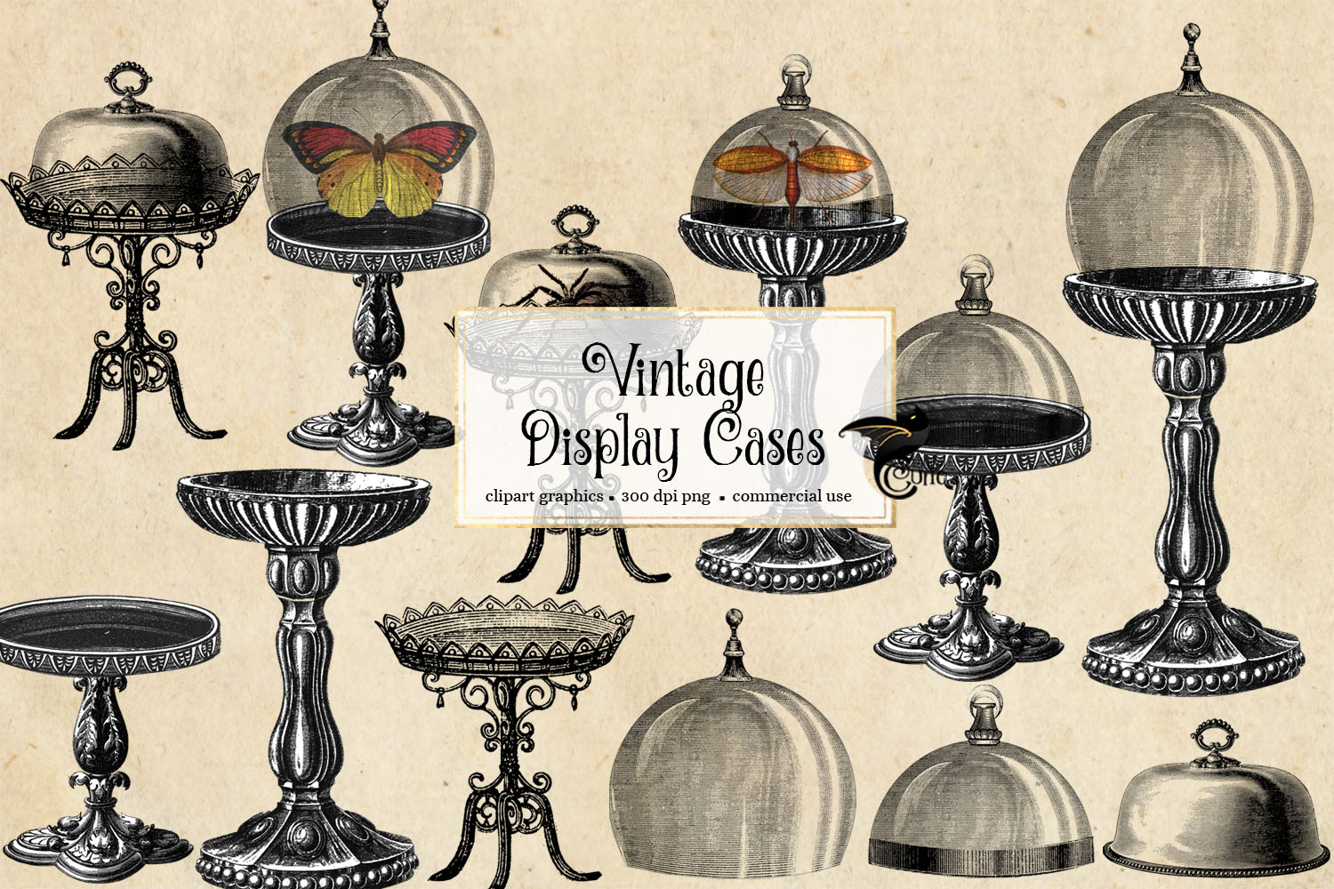 Download Free Vintage Display Cases Clipart Graphic By Digital Curio for Cricut Explore, Silhouette and other cutting machines.