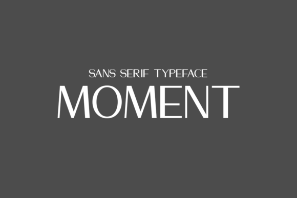 Print on Demand: Moment Sans Serif Font By Allison