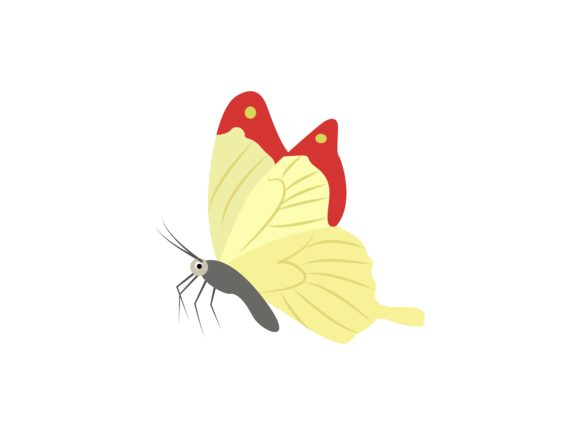 Download Free Pieridae Insect Animal Graphic By Archshape Creative Fabrica for Cricut Explore, Silhouette and other cutting machines.