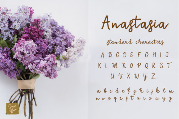 Download Free Anastasia Font By Just Bia Creative Fabrica for Cricut Explore, Silhouette and other cutting machines.