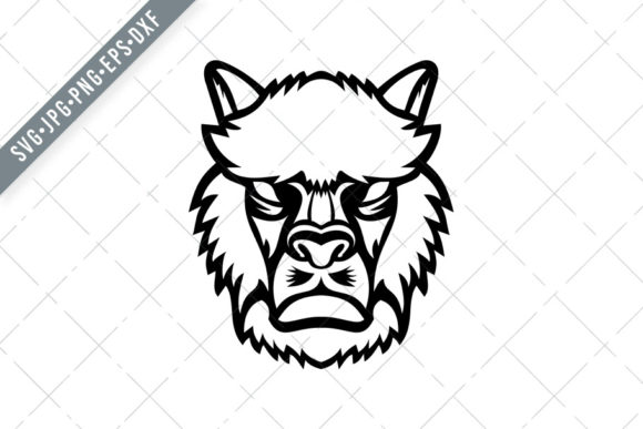 Download Free Angry Alpaca Or Llama Head Mascot Graphic By Patrimonio for Cricut Explore, Silhouette and other cutting machines.
