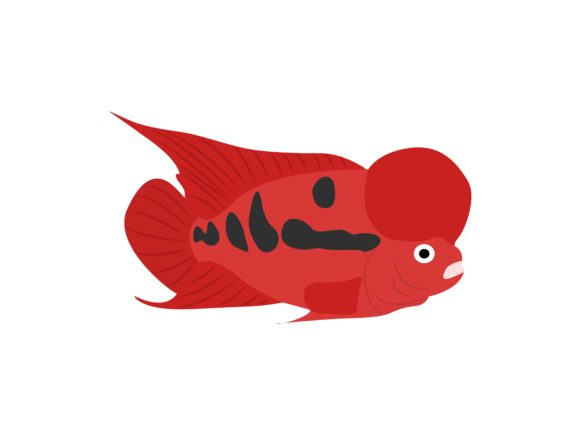 Download Free Lou Han Fish Animal Graphic By Archshape Creative Fabrica for Cricut Explore, Silhouette and other cutting machines.
