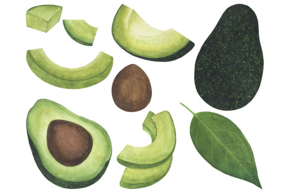 Set Avocado Watercolor Food Illustration Graphic Illustrations By shishkovaiv