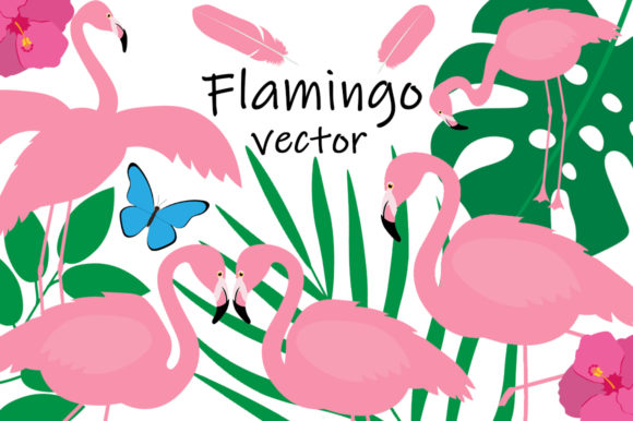 Set Bird Flamingo Vector Illustration Graphic Illustrations By shishkovaiv