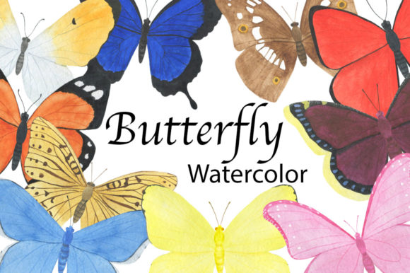 Set Butterfly Watercolor Illustration Graphic Illustrations By shishkovaiv